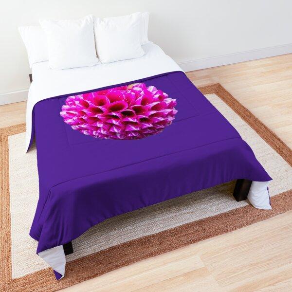 Pink Striped Dahlia  Comforter
