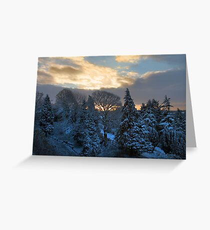 sunrise over snowy trees Greeting Card