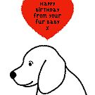Happy Birthday From Your Dog Fur Baby  by Adam Regester