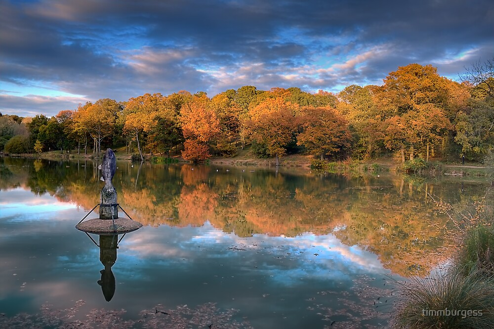 South Thorden Park Lake by timmburgess