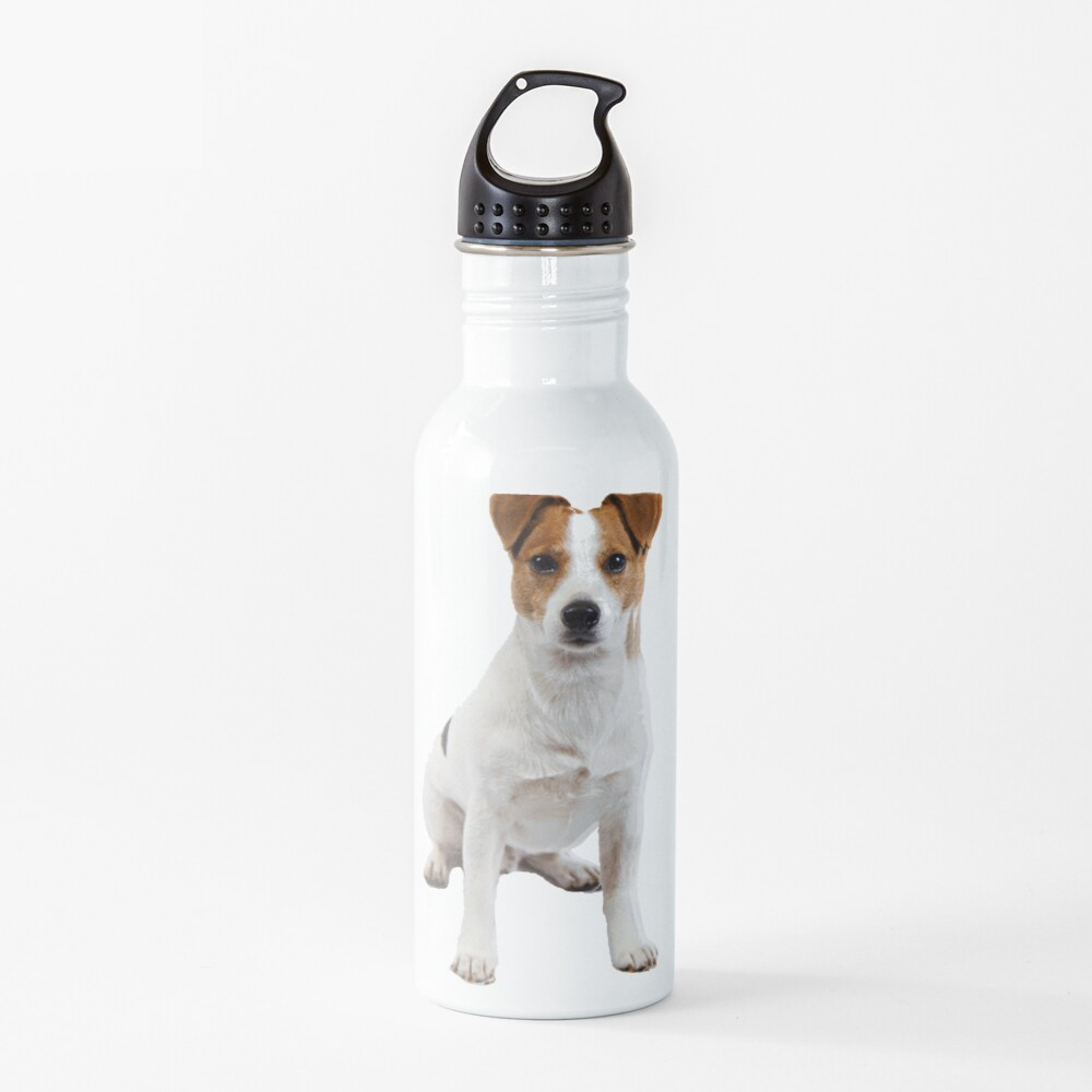 Jack Russell  Water Bottle