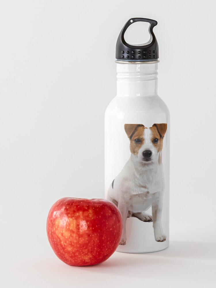 Alternate view of Jack Russell  Water Bottle