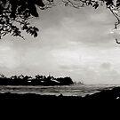 The Cove by linaji