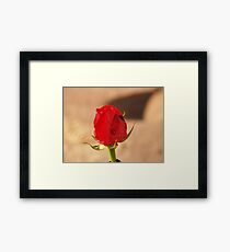 Alone Reality! Framed Print