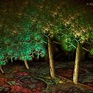 Trees on the carpet by © Kira Bodensted