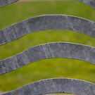 Waves of Steel by Lynn Wiles