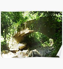 The bridge in the Jungle - seen from down the river Poster