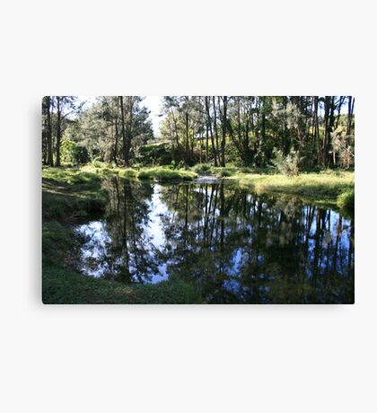 Reflections in Tallebudgera Creek Canvas Print
