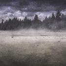 Yellowstone  by Angela King-Jones