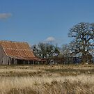 Rustic Barn  by Susan Russell