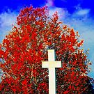 Jahreszeiten ändern sich ~ Das Wort Gottes hält ewig an von Marie Sharp