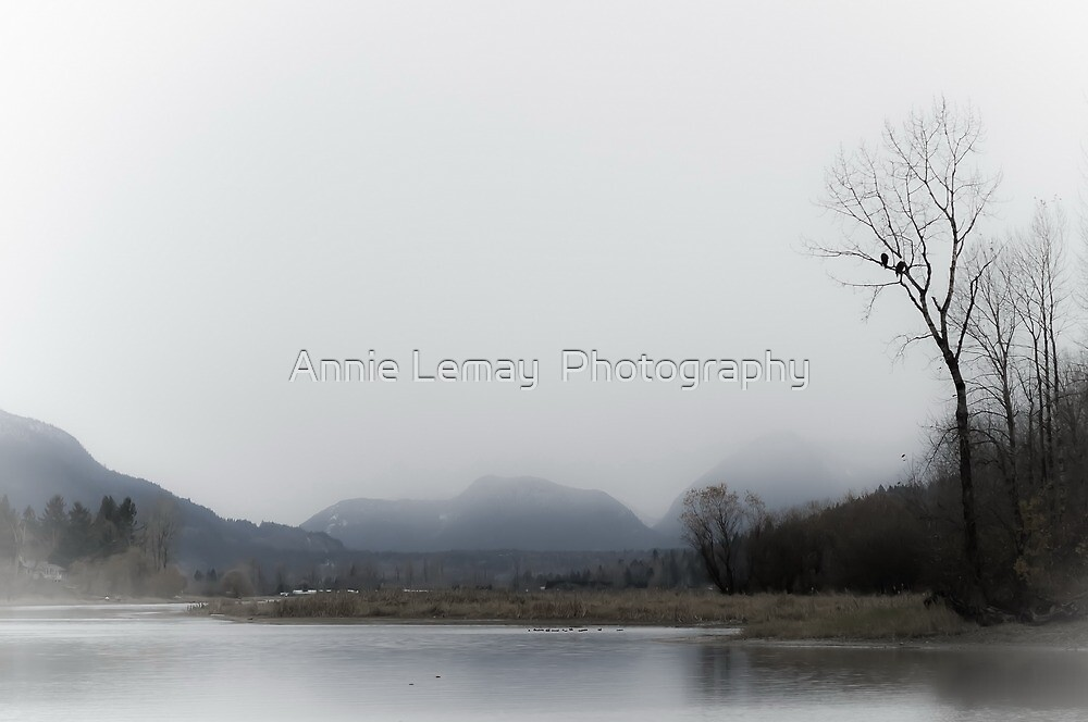 Solitude by Annie Lemay  Photography