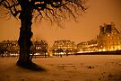 Paris sous la Neige by Louise Fahy