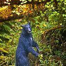 Black Bear. by Alex Preiss