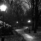 Lighting the Way by ElyseFradkin