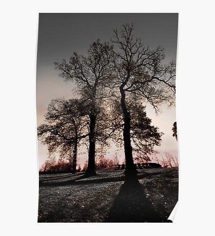 Long Shadows Poster
