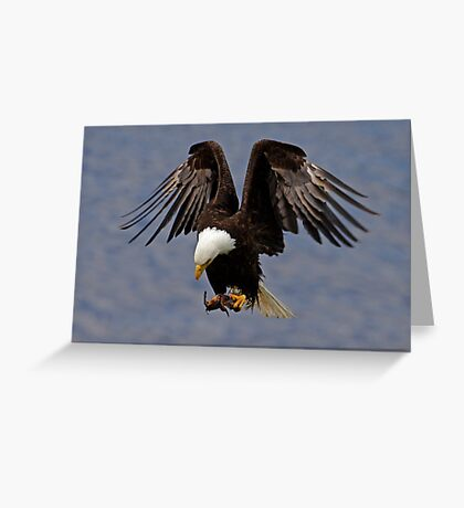 Powerful Descent Greeting Card