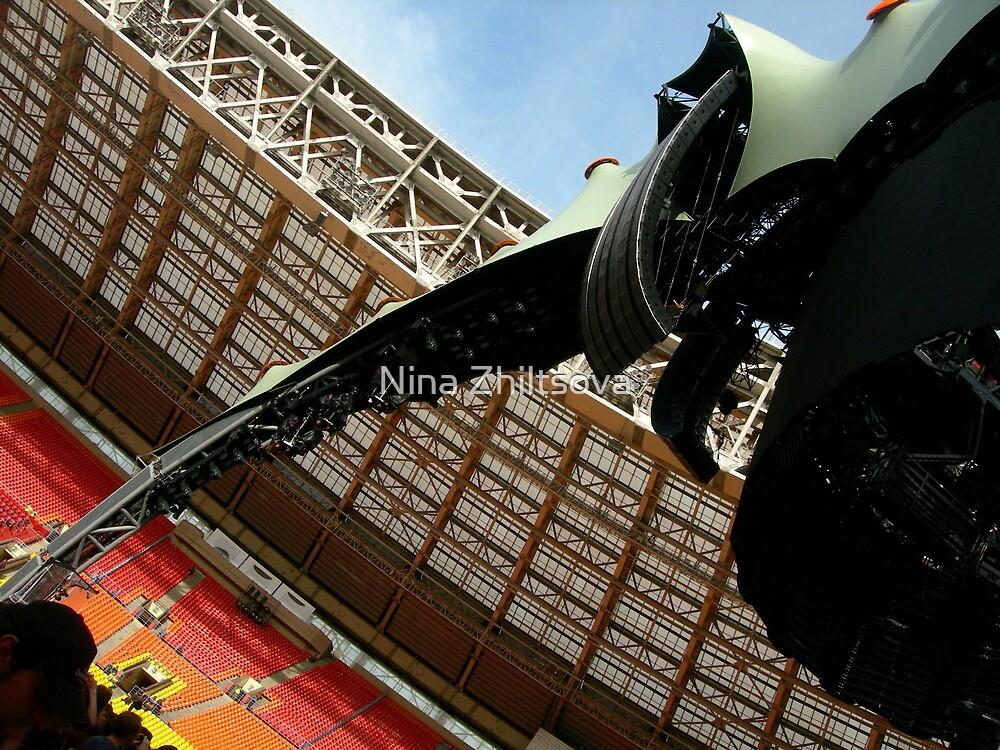 U2 - Live in Moscow 2010 by Nina Zhiltsova