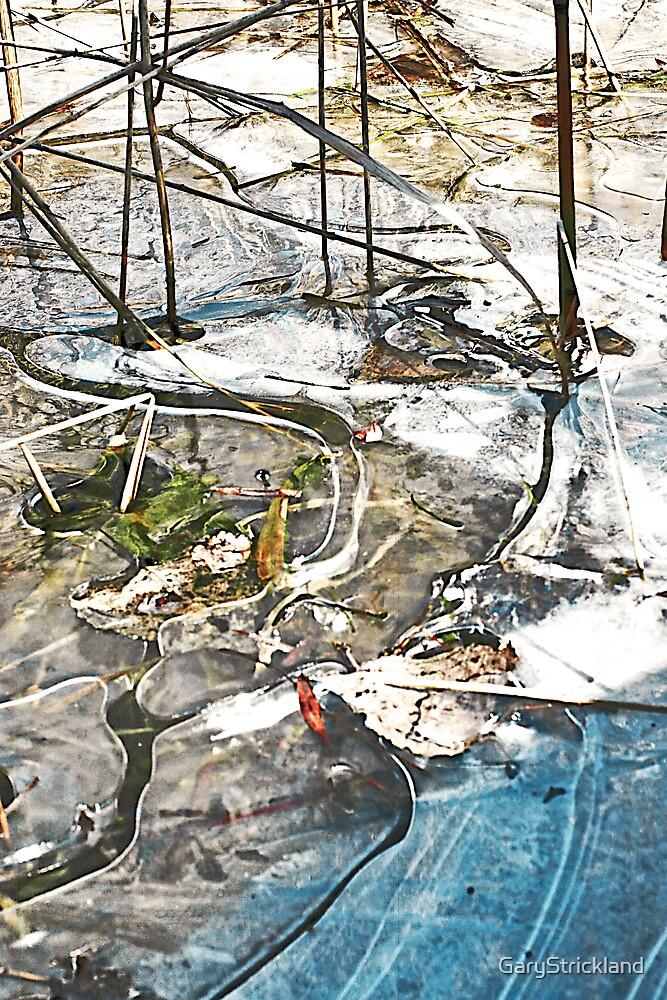 Frozen Magic by GaryStrickland