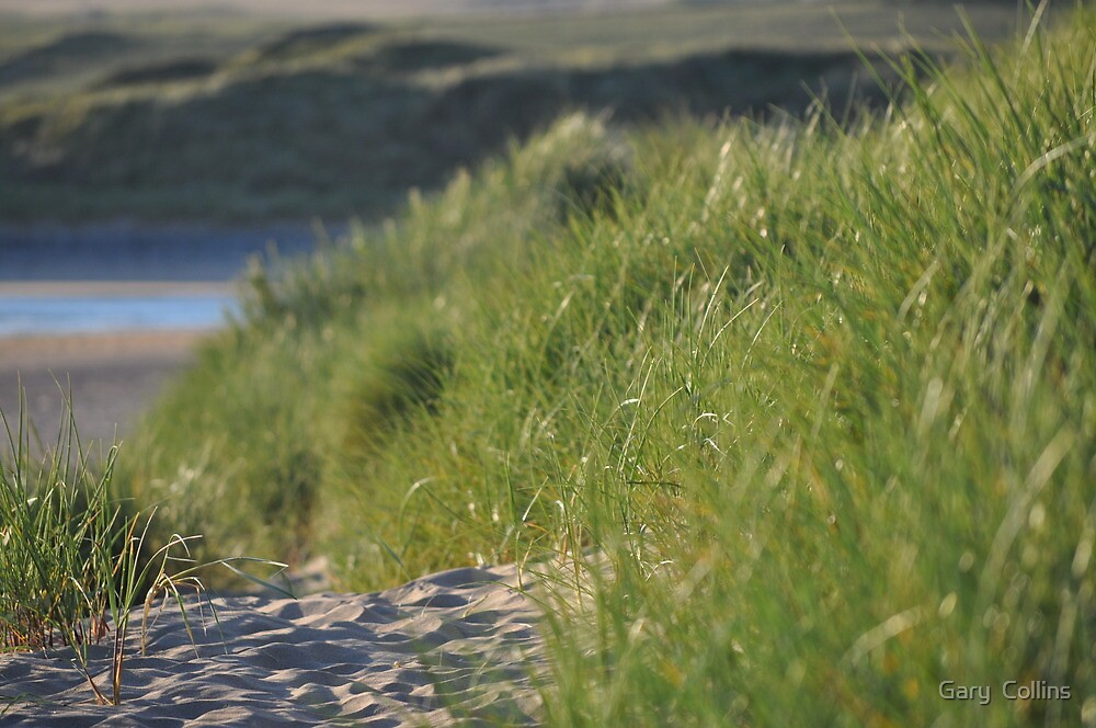 Lahinch Dunes by Gary  Collins