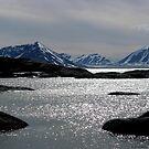 Fijord by © Loree McComb