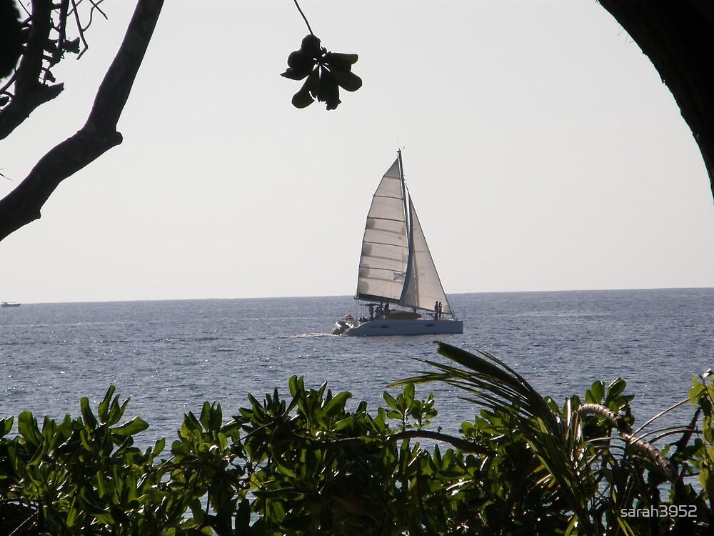 Resort Style Sailing by sarah3952