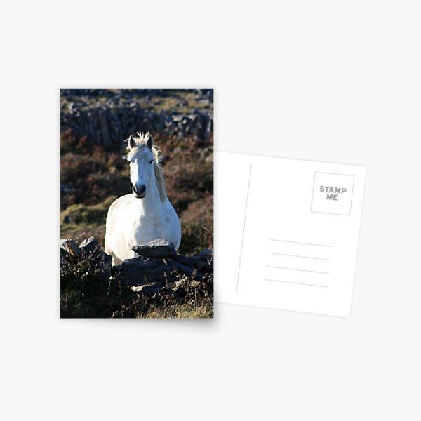 Draíocht - Magic Postcard