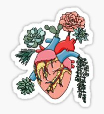 Succulent heart by Sasa Elebea Sticker