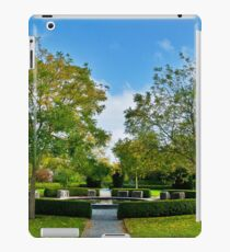 I Can See Your Dreams iPad Case/Skin