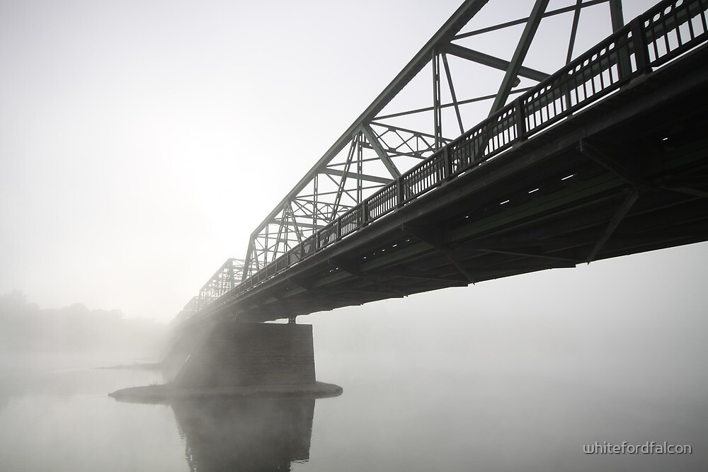 Foggy Crossing by whitefordfalcon