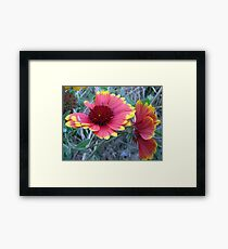 Wild Flowers Close-up Framed Print