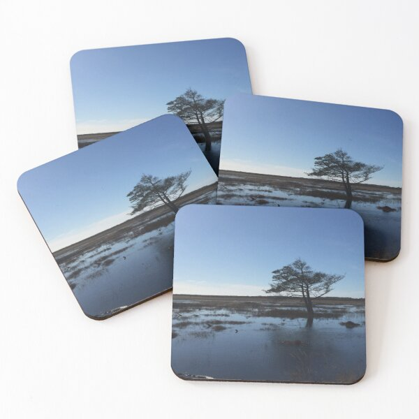 Lonely tree Coasters (Set of 4)
