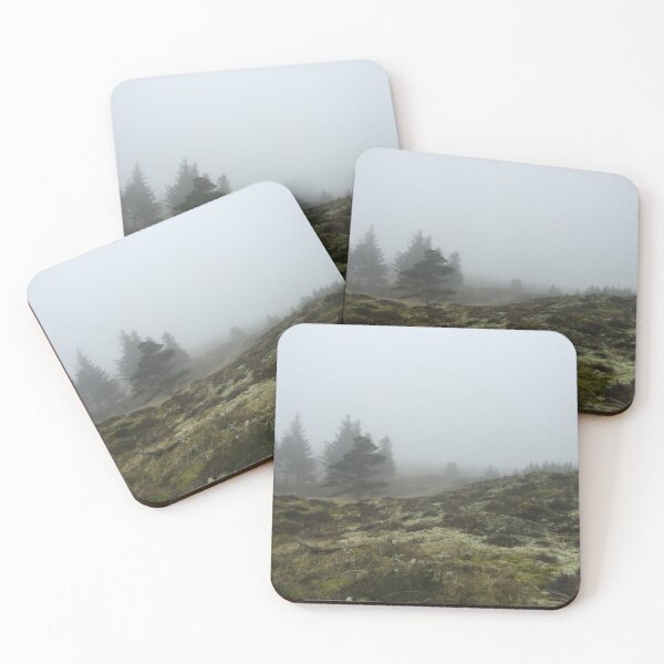 Fog in the forest Coasters (Set of 4)