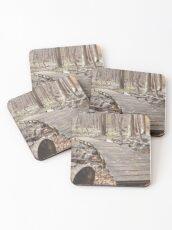 Sourland Mountain Trails Coasters