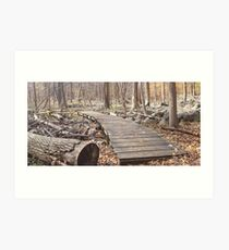 Sourland Mountain Trails Art Print