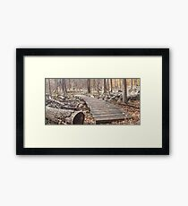 Sourland Mountain Trails Framed Print