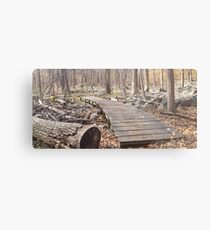 Sourland Mountain Trails Metal Print