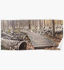 Sourland Mountain Trails Poster