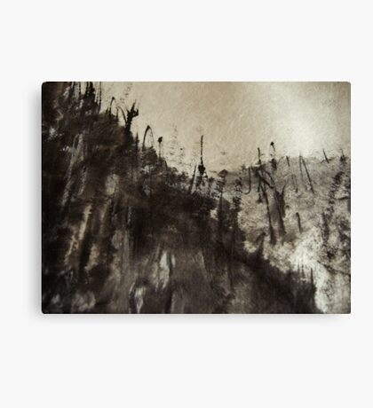 high up mountain forest .... snowy sky  Canvas Print