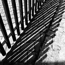 Fenced in by ragman