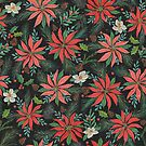 Poinsettias by cmanning