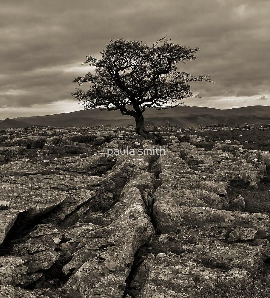 Way up Above by paula smith