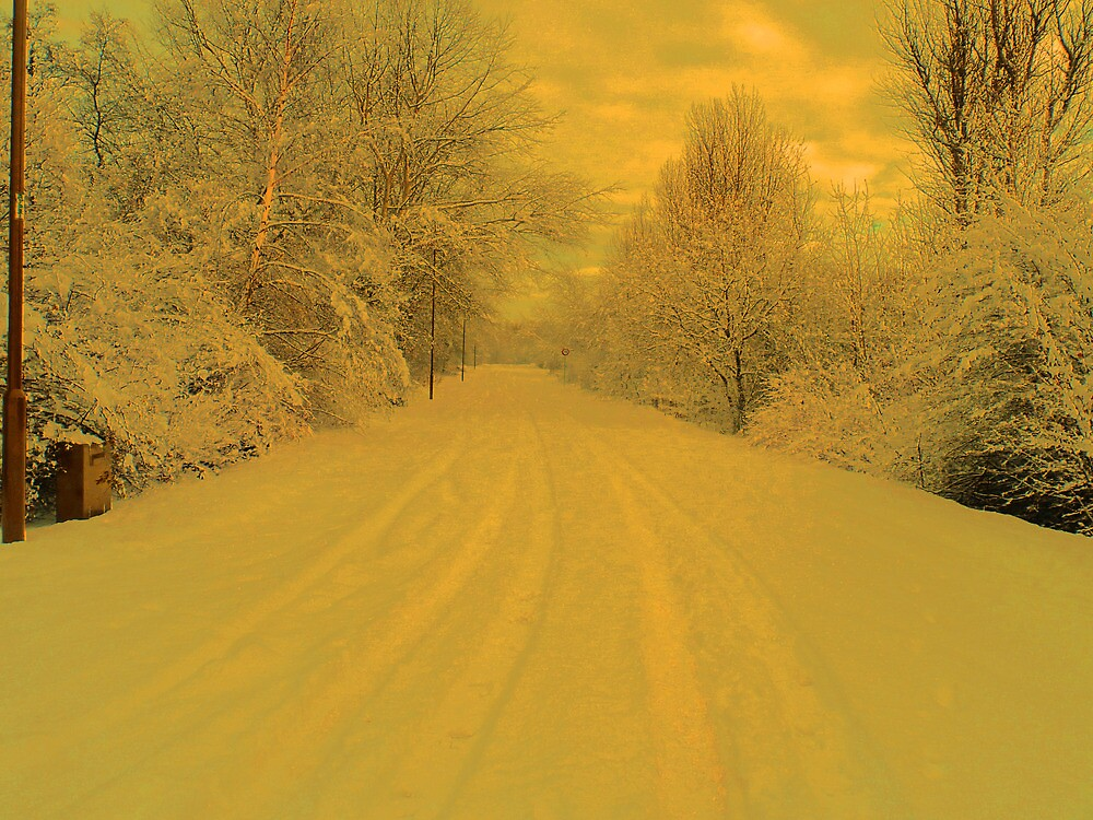 THE LONG WINTER ROAD AHEAD by leonie7