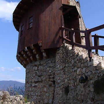 Petrele Castel by miodrag