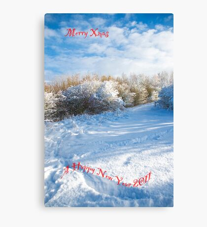 Merry Xmas & Happy New Year Canvas Print