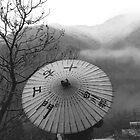 Mountain View in the rain , JAPAN by yoshiaki nagashima