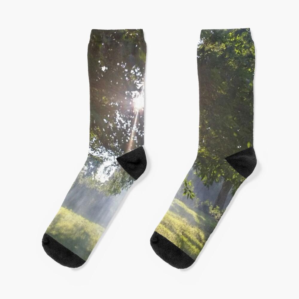M.I. #11 |☼| Smoky Tree Sun Rays - Landscape Shot (Pearson Park) Socks