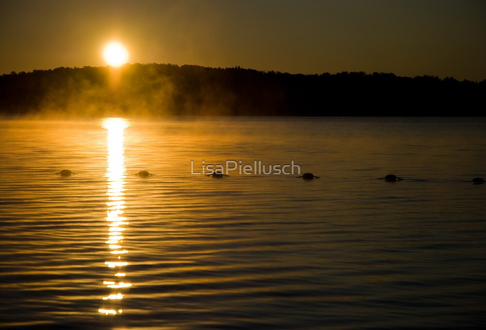 Sunrise Over Eagle Lake by LisaPiellusch