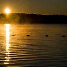 Sunrise Over Eagle Lake by LisaPiellusch