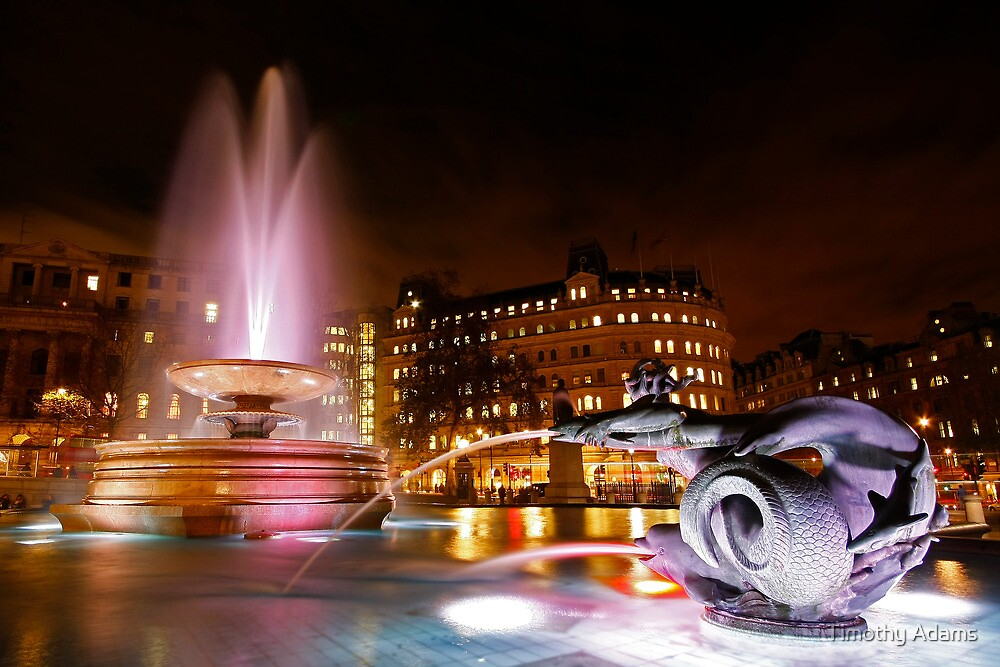 Trafalgar Square fountain at Christmas by Timothy Adams